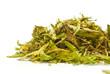 Feuilles de Stevia Rebaudiana Bertoni- édulcorant naturel