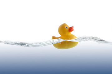 Cute Rubber Duckling