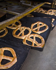 pretzels on baking trays in a cairo bakery