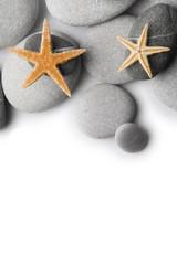 Fondo de Piedras y Estrellas de Mar