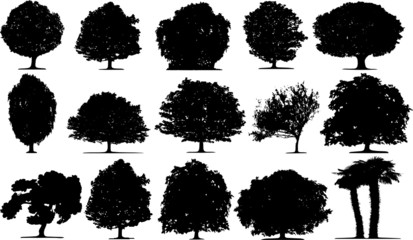 Trees vector on white background