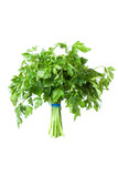 Parsley bunch, seasoning