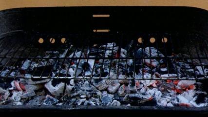Barbecue pronto a cuocere