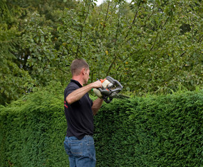 Hedge cutting 1