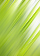Green abstract motive