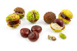 Autumn look with chestnuts over white background