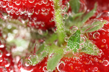 Strawberry macro in water