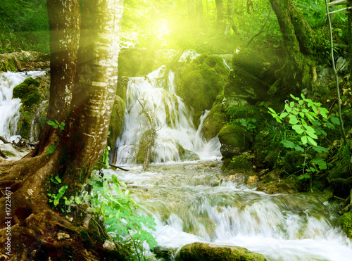 waterfall in deep forest - 17224671