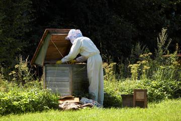 Beekeeper with honeycomb.