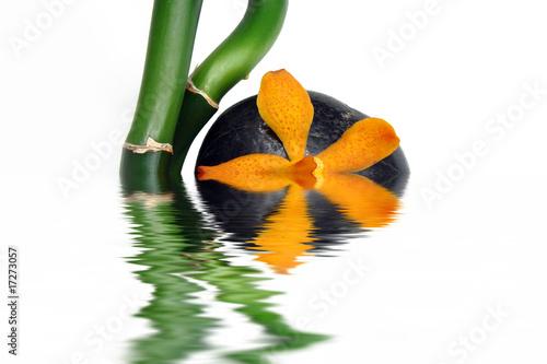 Leinwandbild Motiv Composition bambou orchidee avec reflets