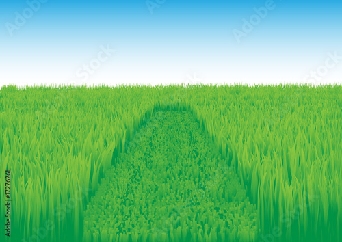 oblique_grass_field