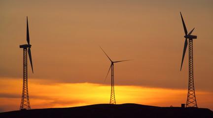 Sunset wind blades