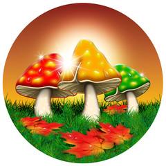 Fungo d'Autunno-Autumn Mushroom-Champignon d'Automne