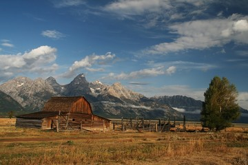 Old abandoned barn in the Tetons