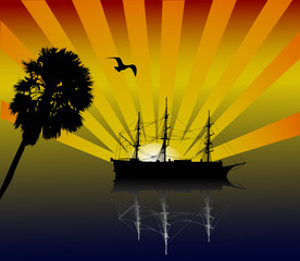 palm, boat and sunset