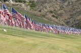 Hundreds of US Flags