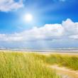 Fototapeten,düne,nordsee,meer,stranden