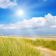 Fototapeten,sanddünen,north sea,meer,strand