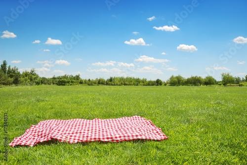 Leinwandbild Motiv picnic cloth on meadow