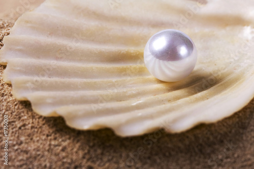 Foto op Plexiglas Indonesië pearl on the seashell