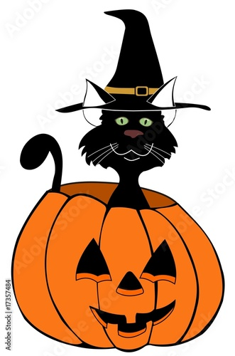 Halloween black cat in pumpkin illustration