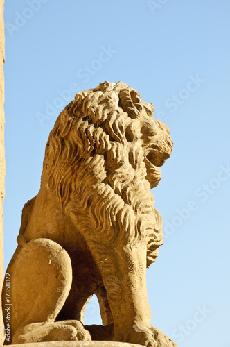 Medieval lion sculpture against blue sky - Florence, Italy