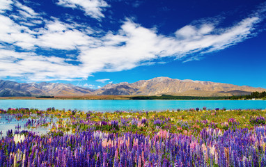 Mountain lake, New Zealand