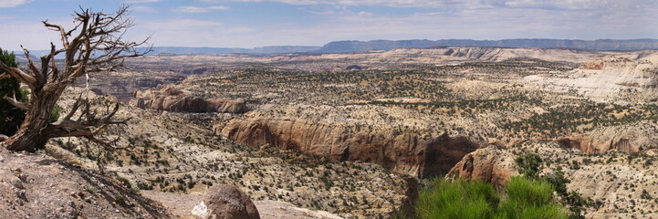 panoramic view in the southwest of united states