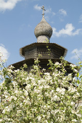 Dome of an old wooden church in blossom