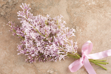 Pink Lilac on Vintage Background