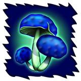 Funghi Blu-Blue Mushrooms-Champignon Bleu