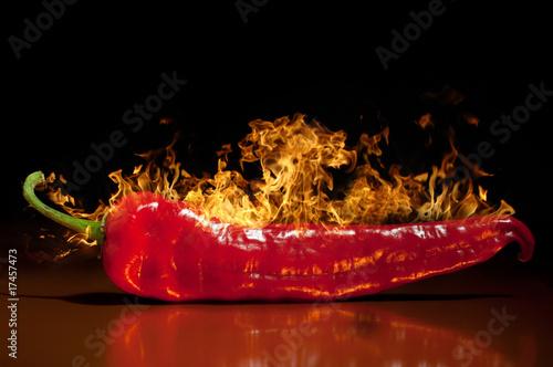 red hot chili pepper, very hot. - 17457473