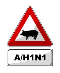 Virus A/H1N1