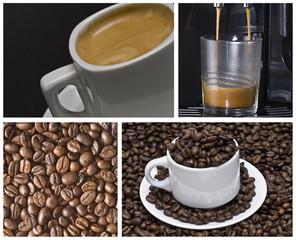 El mundo del café.