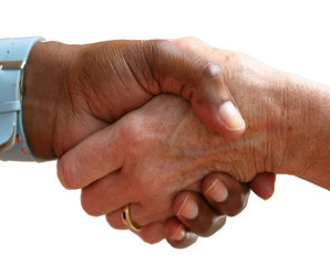 Handshake with Different Races