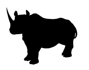 Rhinoceros Illustration Silhouette