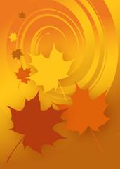 Ahornblätter, Herbst, Vektorgrafik