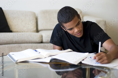 Teen Doing Homework - 17539006