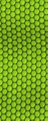 Reptile texture - seamless.