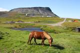 Iceland - Olafsvik on Snaefellsnes Peninsula poster
