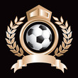 Soccer ball in gold royal crest