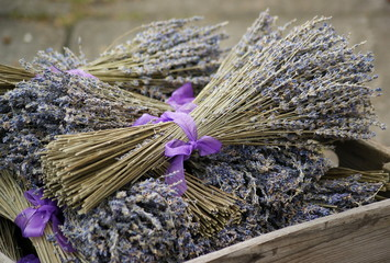 Lavender bunches in a box