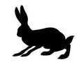silhouette of the rabbit isolated on white background
