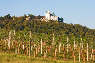 Leopoldsberg seen from wine yard, Vienna