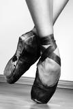 Ballet Shoes - 17583443