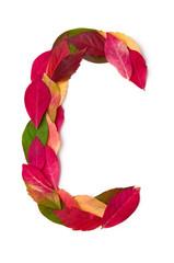 Blätterbuchstabe C