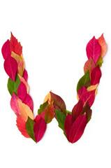 Blätterbuchstabe W