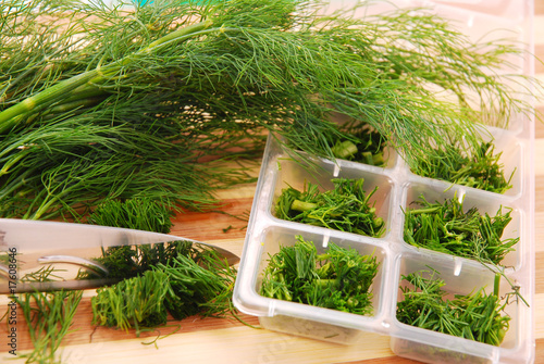 freezing the dill for winter - 17608646