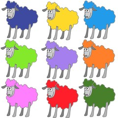 pecorelle colorate