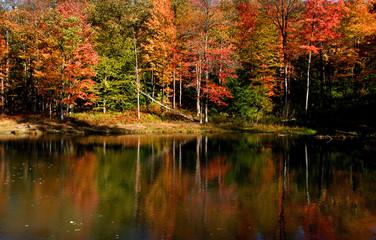 autumn landscape in Pennsylvania